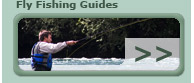 Fly Fishing Guides