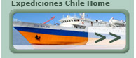 Home Exchile
